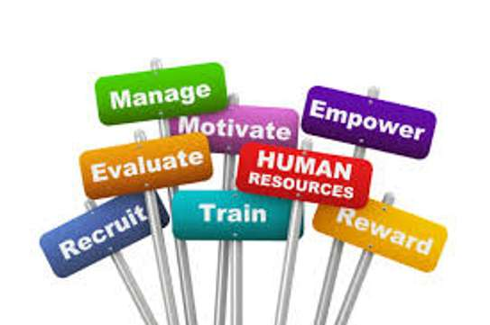 Bestcare HR Solutions image 1