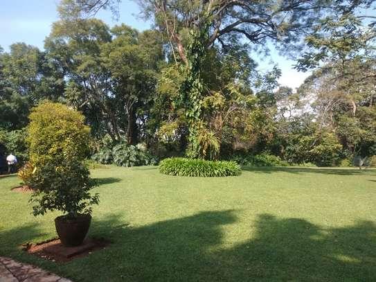 Thigiri - House, Bungalow image 13