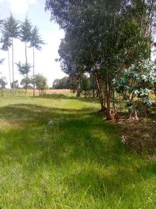 Land for Lease in Kinangop image 2