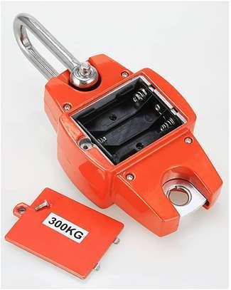 hot selling Portable 300kg Mini Crane Scales image 1