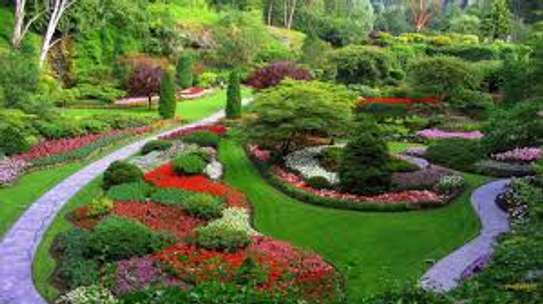 Garden Maintenance, Water Features, Potted Plants & Landscaping Services image 2