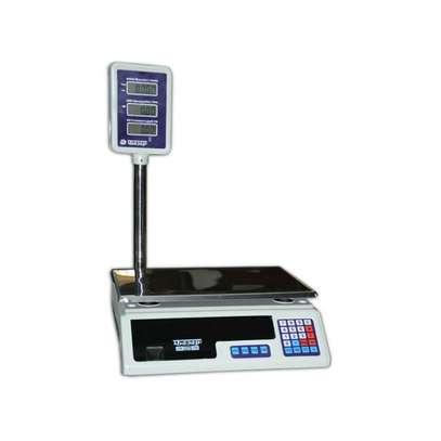 ACS 30 calibration electronic scale acs price electronic scale image 1