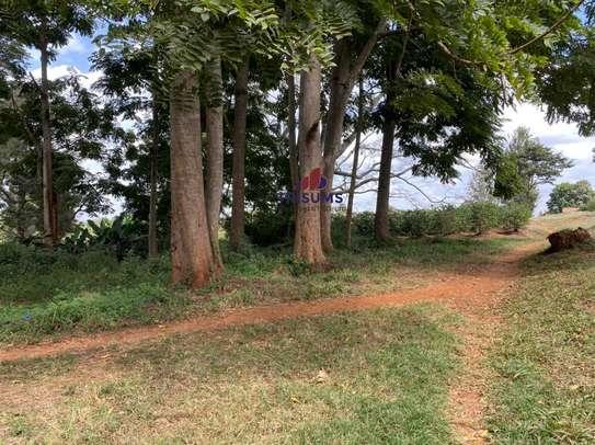 0.25 ac land for sale in Ruiru image 12