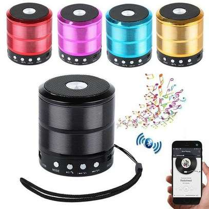 Wster Mini Speaker with Bluetooth (WS-887) image 2