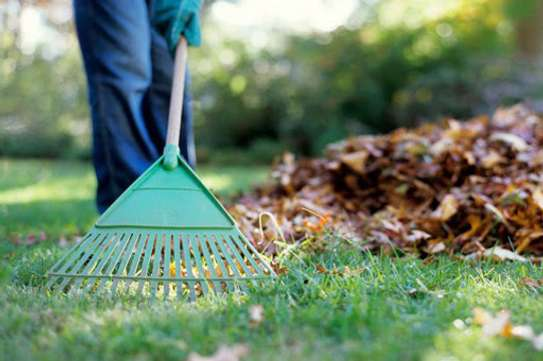 Reliable & Affordable Gardeners |High Quality Gardening & Landscaping.Contact us today image 9