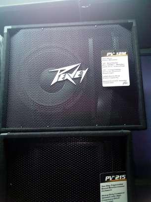 peavey :pv 115loud speaker image 1