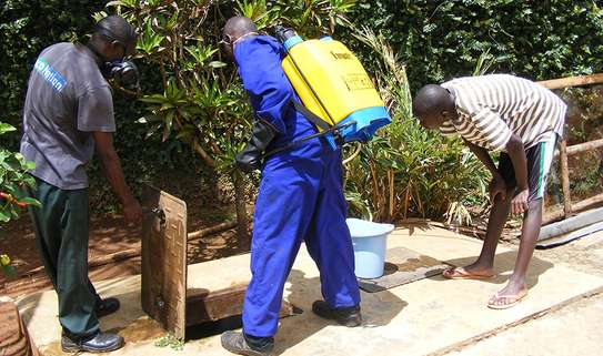Best Pest Control (Bedbugs, Insects, Rodents, Termites) Professionals Nairobi image 14