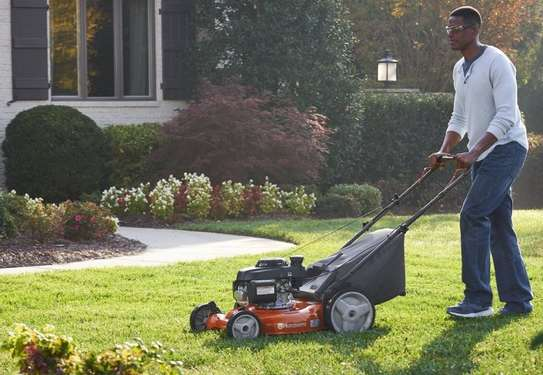 Best Gardening & Lawn Mowing Services|Contact Us Today. image 13