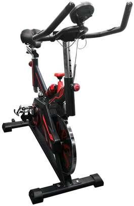 Spinning Bike S100 image 2