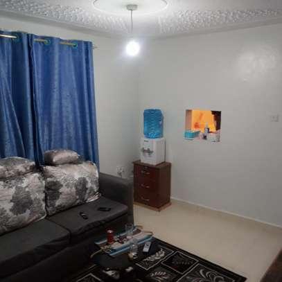 furnished 2 bedroom image 2