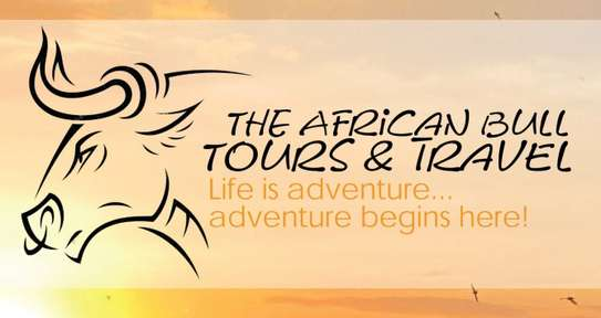 The African Bull Tours & Travel image 1