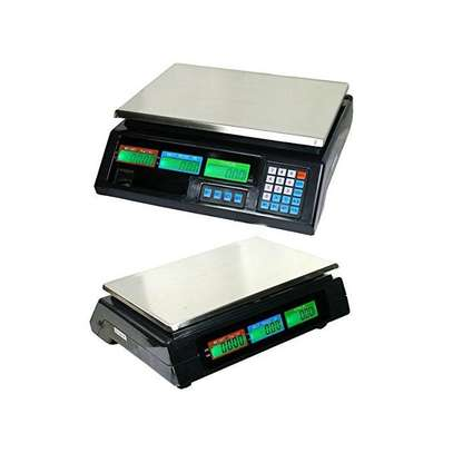 ACS 30 Digital Weighing Scale - Up To 30Kgs image 1