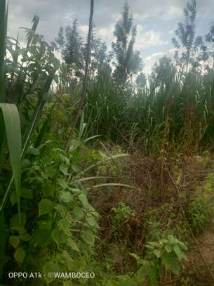 PRIME LAND FOR SALE 10 acres at REDHILL LIMURU way image 4