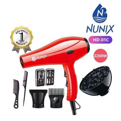 Professional Hair Dryer image 1