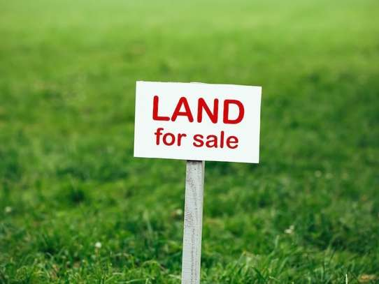 Nyeri Town - Commercial Land, Land
