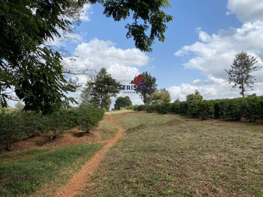 0.25 ac land for sale in Ruiru image 2