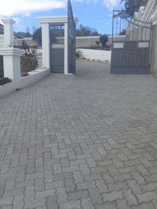 Cabro Blocks and Concrete Paving Tiles image 7