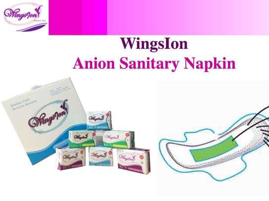 Wingsion Dynamic Gift Box image 1