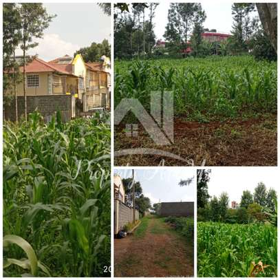 0.1 ha commercial land for sale in Kinoo image 5