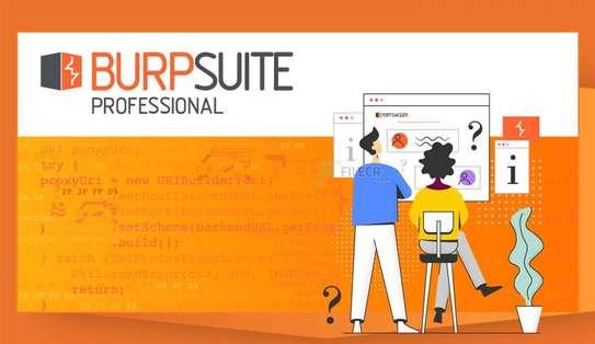 Burp Suite Professional 2020 image 1