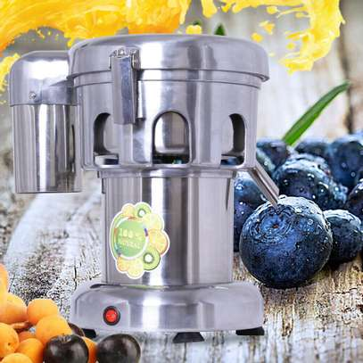 Commercial Juice Extractor, 110V Heavy Duty image 2