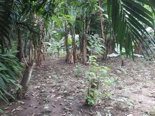 Mtwapa - Land, Residential Land image 6