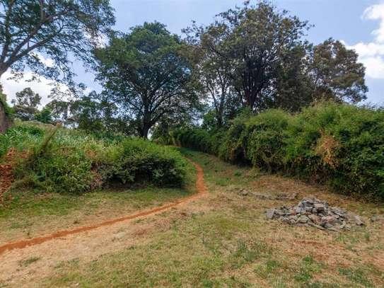 New Kitusuru - Land image 7