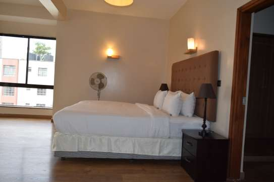 Furnished 3 bedroom apartment for rent in Lavington image 1
