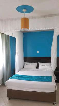 Ceiling mounted mosquito nets opens like curtains image 3