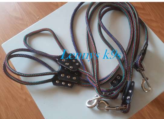 Dog leashes and collars. image 5