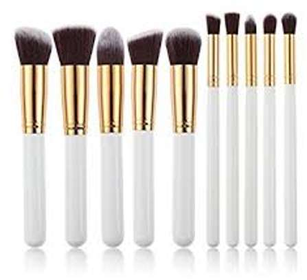 10 piece make up brushes