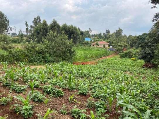 Kikuyu Town - Residential Land, Land image 5