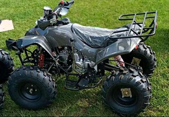 Quadbike image 2