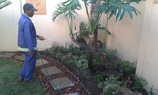 PROFESSIONAL LANDSCAPING, LAWN CARE, & MAINTENANCE SERVICES NAIROBI.GET A FREE QUOTE TODAY.