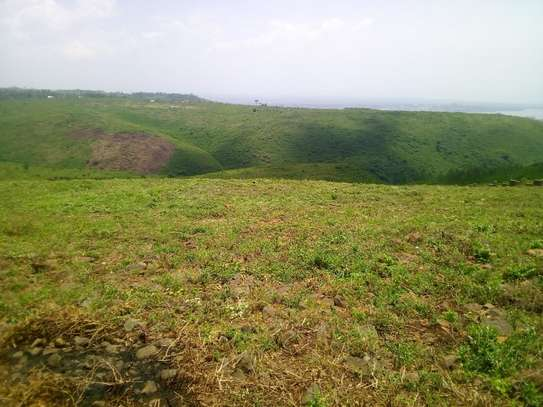 0.25 ac land for sale in Riat Hills image 9