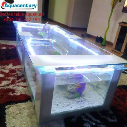 mega coffee table aquarium image 3