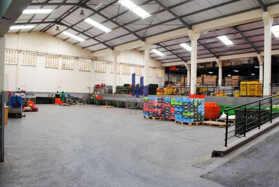 90000 ft² commercial property for sale in Limuru Area image 13