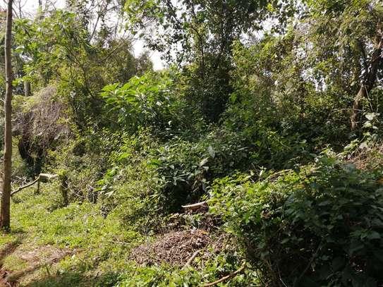 Lower Kabete - Land, Residential Land image 3