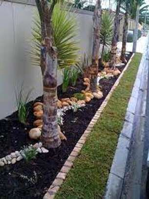 Garden Maintenance Services | Hire Best Gardeners When You Need Them | Contact us today! image 12