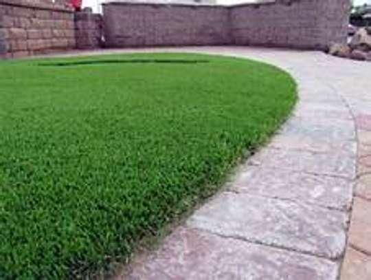 New Grass carpets image 2