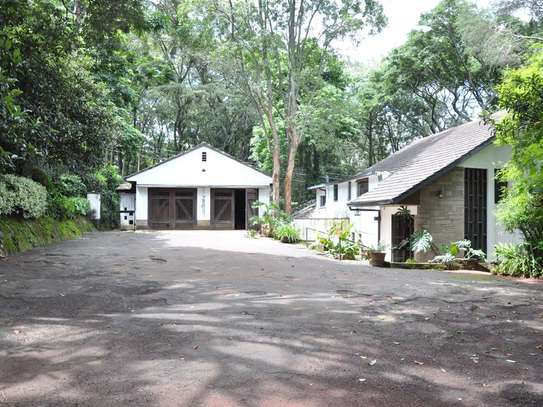 Old Muthaiga - House, Land image 5