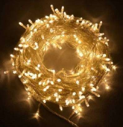 Gold Rice Lights  Pack of 1 10 meters image 1