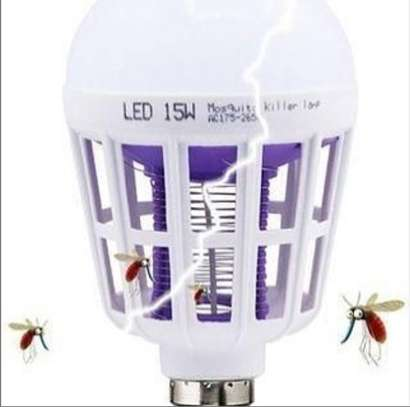 Mosquito bulb image 1