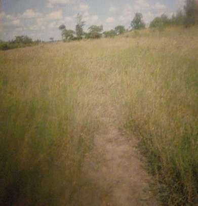 Plot for sale in Nkoroi Rongai area, 0.25 acres