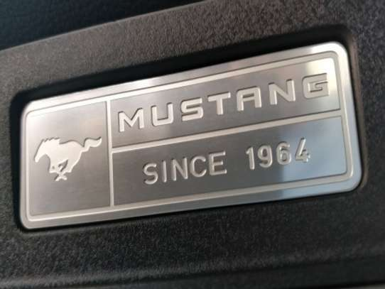 Ford Mustang image 11