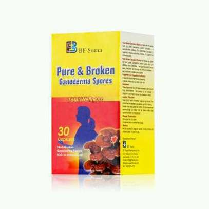 Pure & Broken Ganoderma Spores; 30 capsules by bf suma. image 2