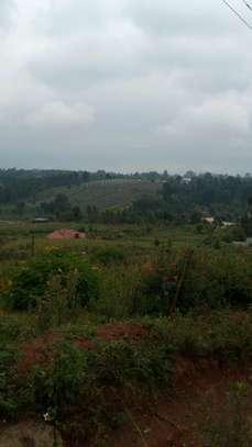 PRIME (50 by 100)PLOT FOR SALE-Kikuyu,Ondiri image 5