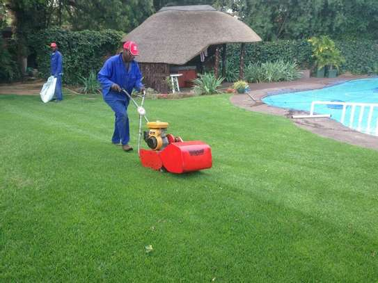 Reliable & Affordable Gardeners |High Quality Gardening & Landscaping.Contact us today image 3