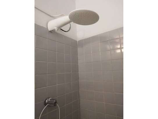 Lorenzetti Advanced instant shower heater