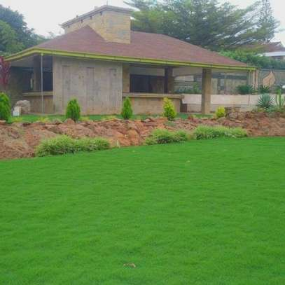 Landscaping(Commercial &  Residential image 1